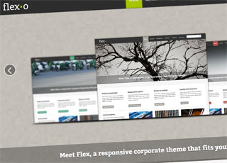 Flexo theme for html