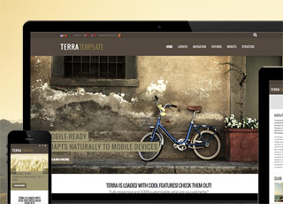 Terra theme for sharepoint